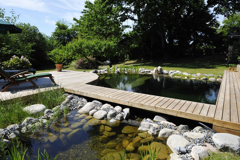 #604E24 Mest effektive Nul Energi Svømmesøer Naturpools Prydbassiner & Friluftsbad Gør Det Selv Vand I Haven 6425 15009986425